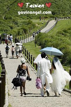 新人也喜歡來擎天崗拍婚紗照
