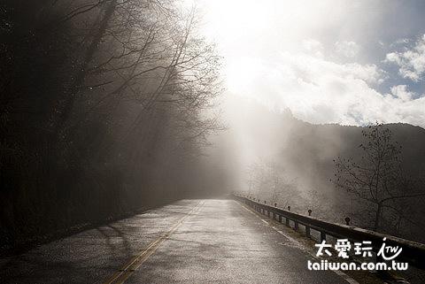 太平山山路常有霧氣