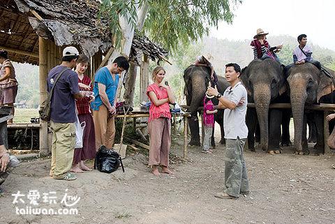 Patara大象農場解說人員
