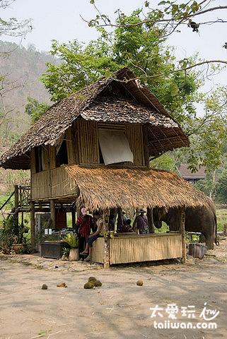Patara大象農場辦公室