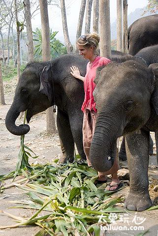 跟小象合照