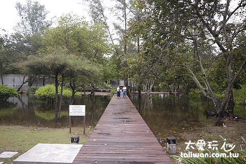 Costa Lanta的森林水池