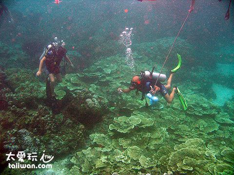 Ter Bay海底世界
