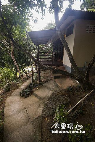 南園島半山腰的木屋
